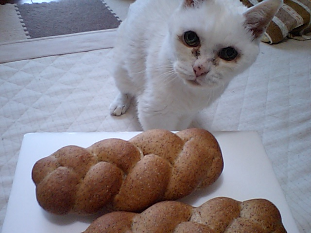 三つ編み胚芽パン