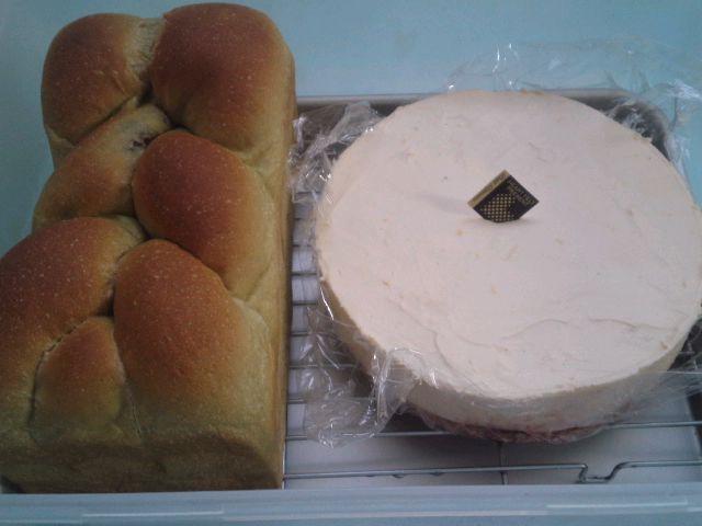 抹茶ブレッドとレアチーズケーキ