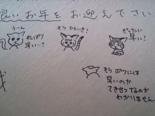 老猫トリオ